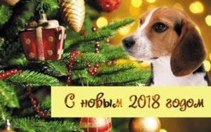 Поздравляю Вас с наступающим Новым 2018 годом!