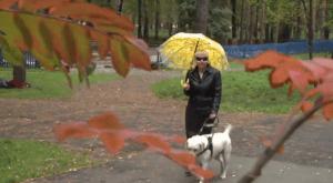 Фонд «Лабиринт 42» создал социальный ролик ко Международному дню слепых