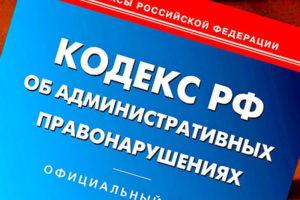 Госдума вводит штрафы за отказ инвалидам и пожилым людям в доступе к товарам и услугам