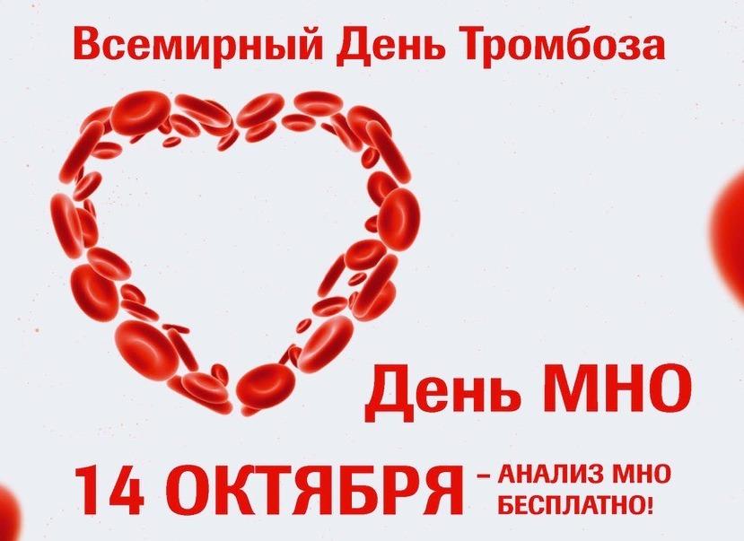 Кемерове пройдет самая масштабная социальная акция «День МНО»
